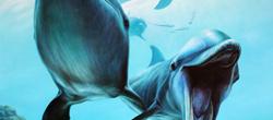 Sirenas 2013